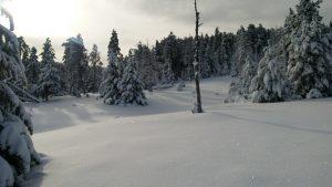 Nieve para flotar